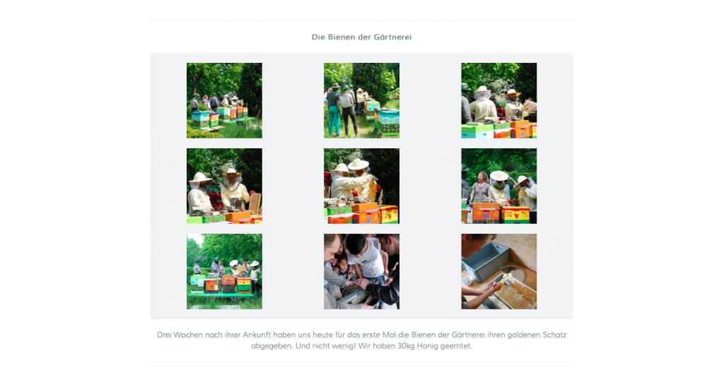 webseite_gärtnerei4